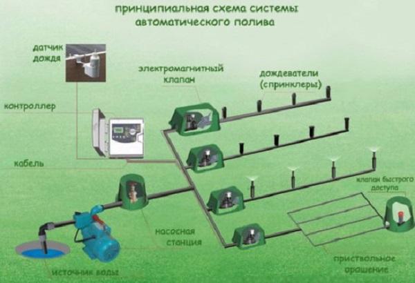Система полива газона и прикорневого орошения