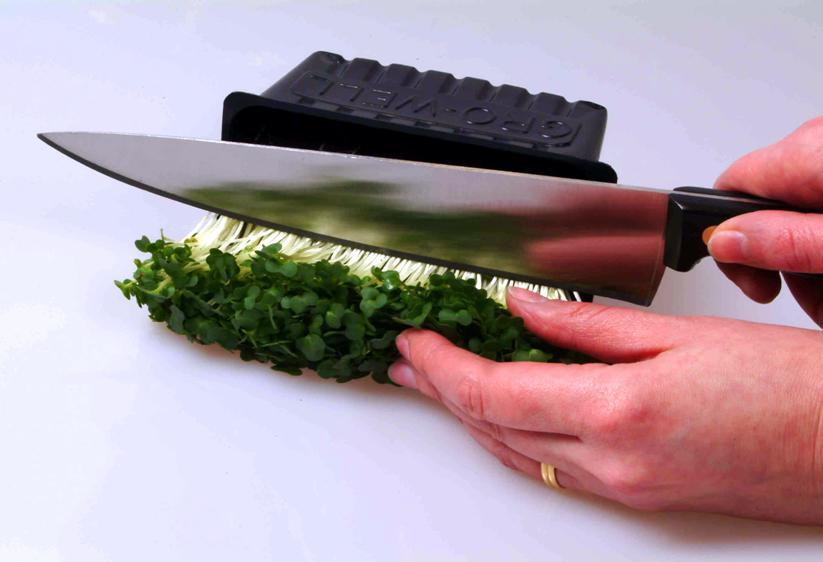 Срезка кресс-салата