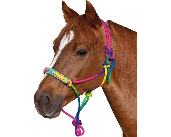 Недоуздок оказывает давление на морду коня узелками, так как он не предполагает в своей конструкции наличия удил