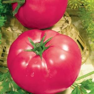 """Признанный любимец среди огородников - томат """"Розовые щечки"""""""