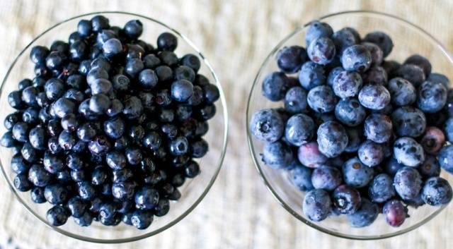 Голубика и черника- в чем разница