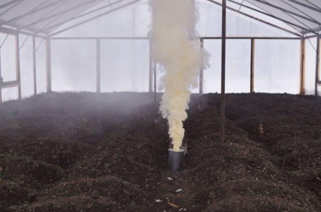 Кислотность почвы для огурцов
