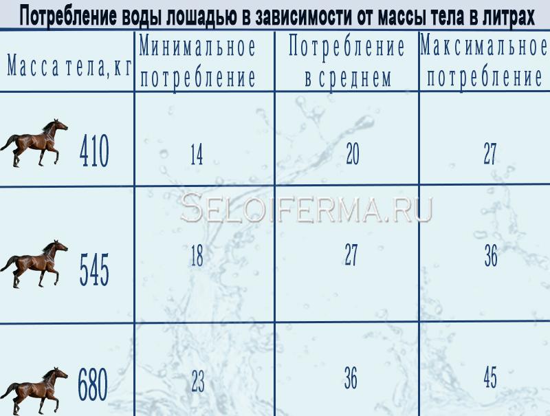 Таблица расхода воды для лошади