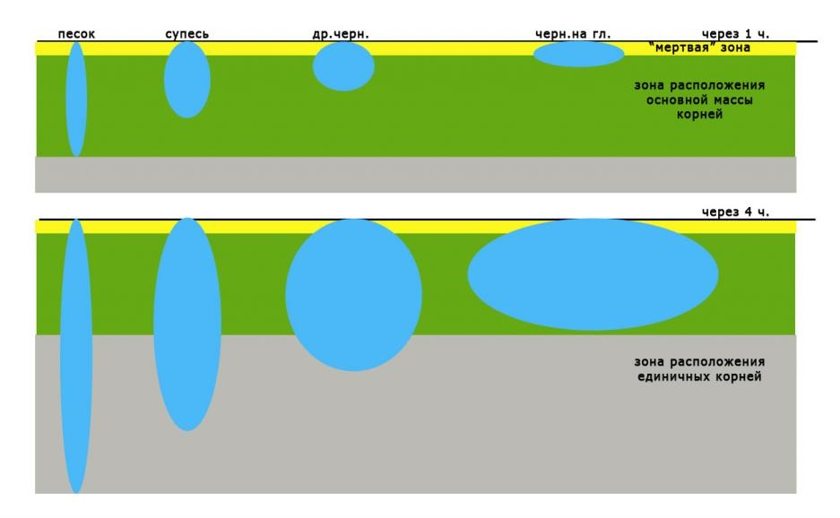 Область смачивания при капельном поливе на разных грунтах