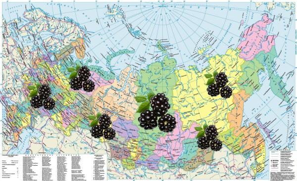 Посадка в разных регионах