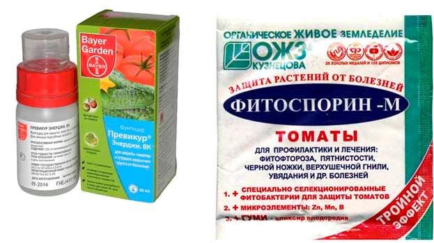 Препараты против грибоковых заболеваний рассады томатов