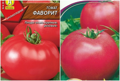Характеристика и описание сорта томата Фаворит