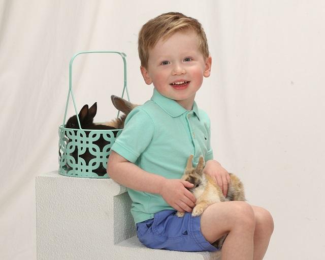 плюсы или минусы, мальчик держит кролика на руках
