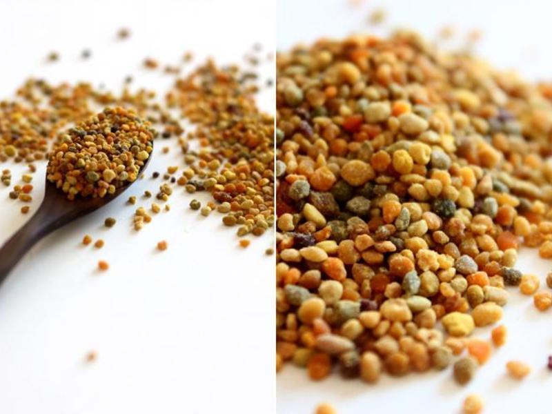 Особенности выбора пыльцы
