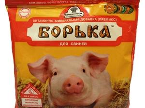 Как давать премикс для свиней