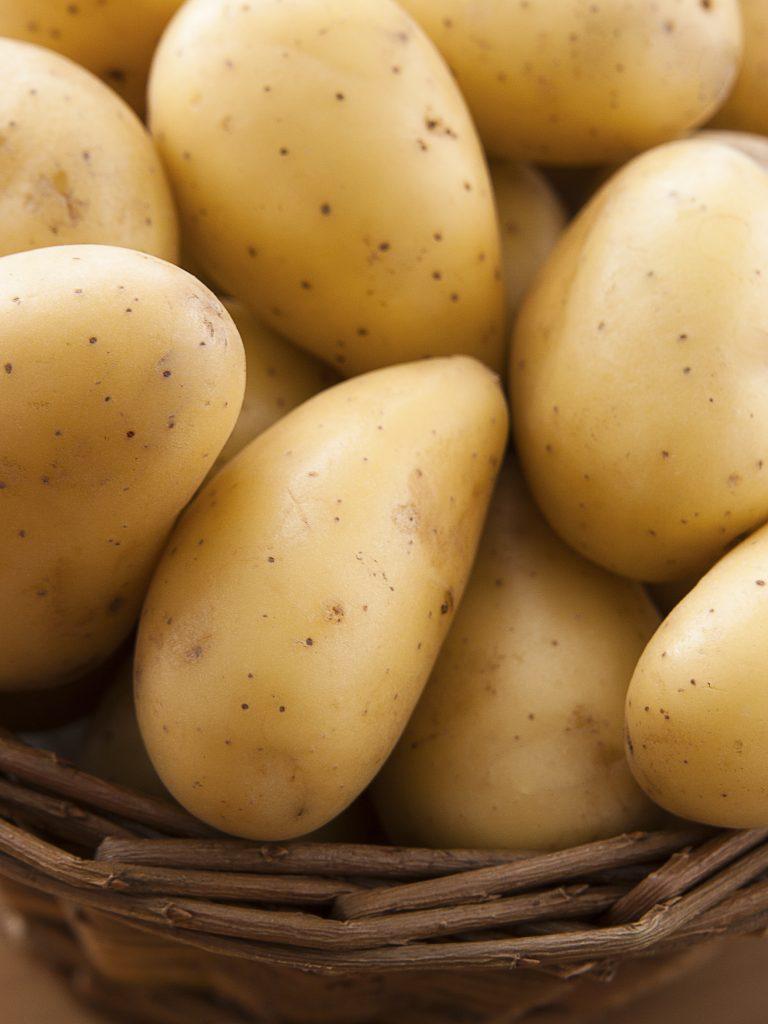 Красивый и ровный картофель