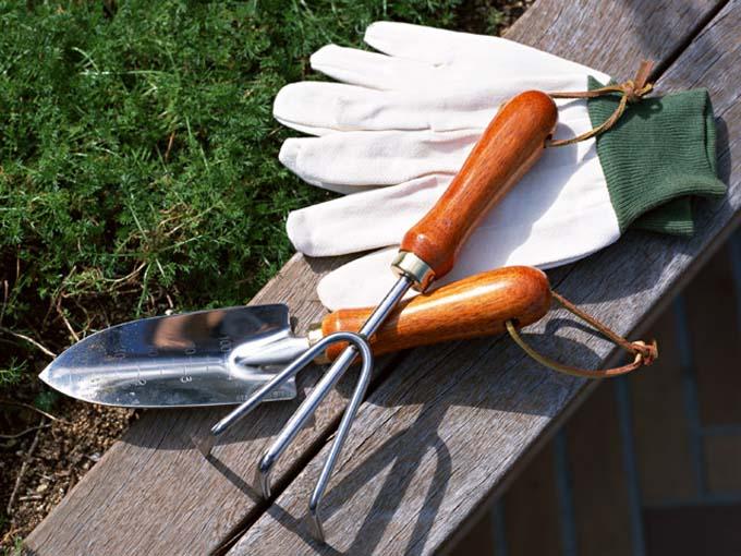 Клубника нуждается в непрерывном поступлении кислорода к корням, поэтому полив надо сочетать с рыхлением