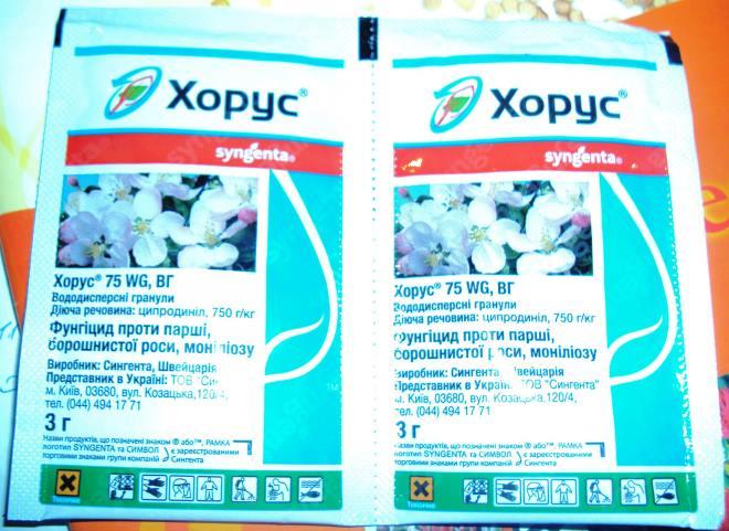 Два пакета с препаратом Хорус для лечения виноградных заболеваний