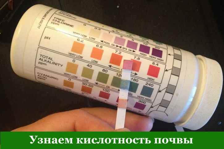 Индикатор кислотности садовой почвы