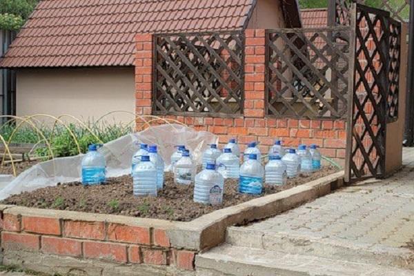 экологическая чистота