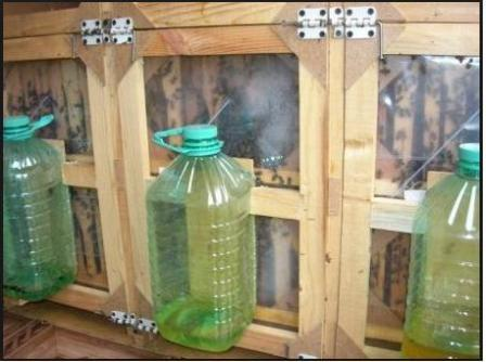 Пример кормушек из пэт бутылок
