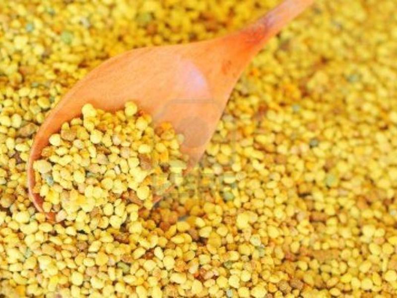 Описание продукта пчелиной пыльцы