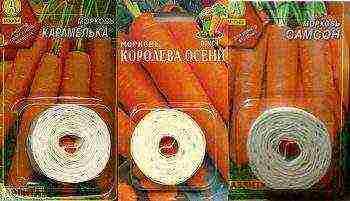 сроки посадки моркови в сибири в открытый грунт