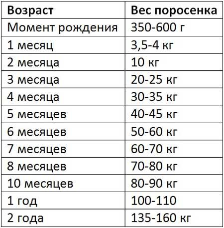 Таблица продуктивности уток породы агидель