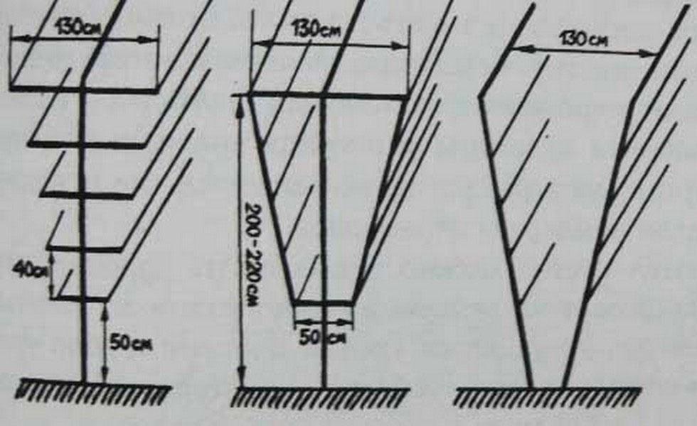 V-образные перголы разных конструкций