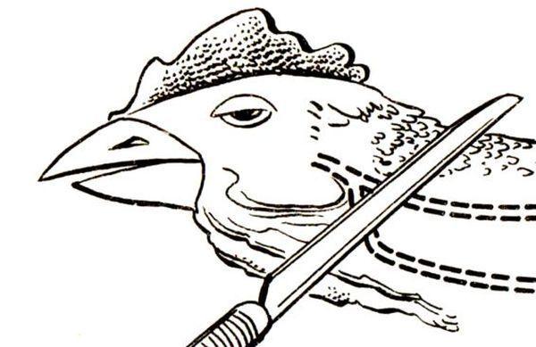 Острым ножом перерезают курице горло
