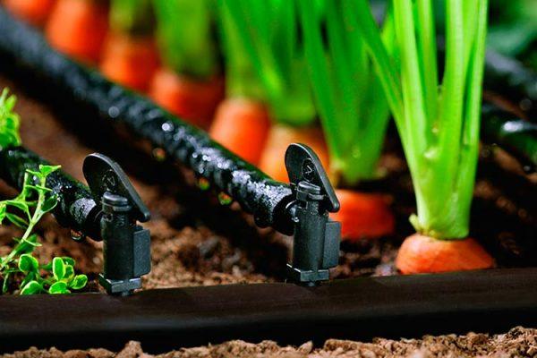 Капельное орошение огорода