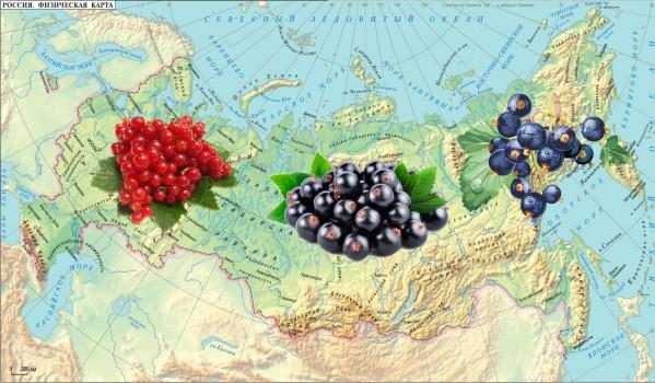 Весенний уход в разных регионах