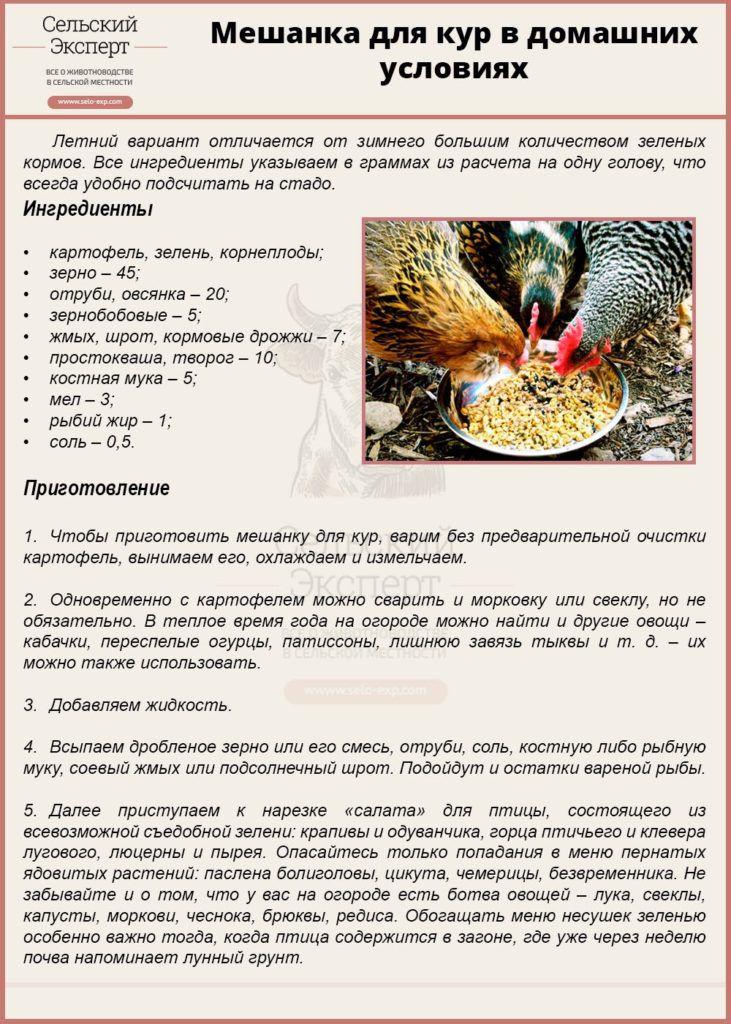 Как приготовить мешанку