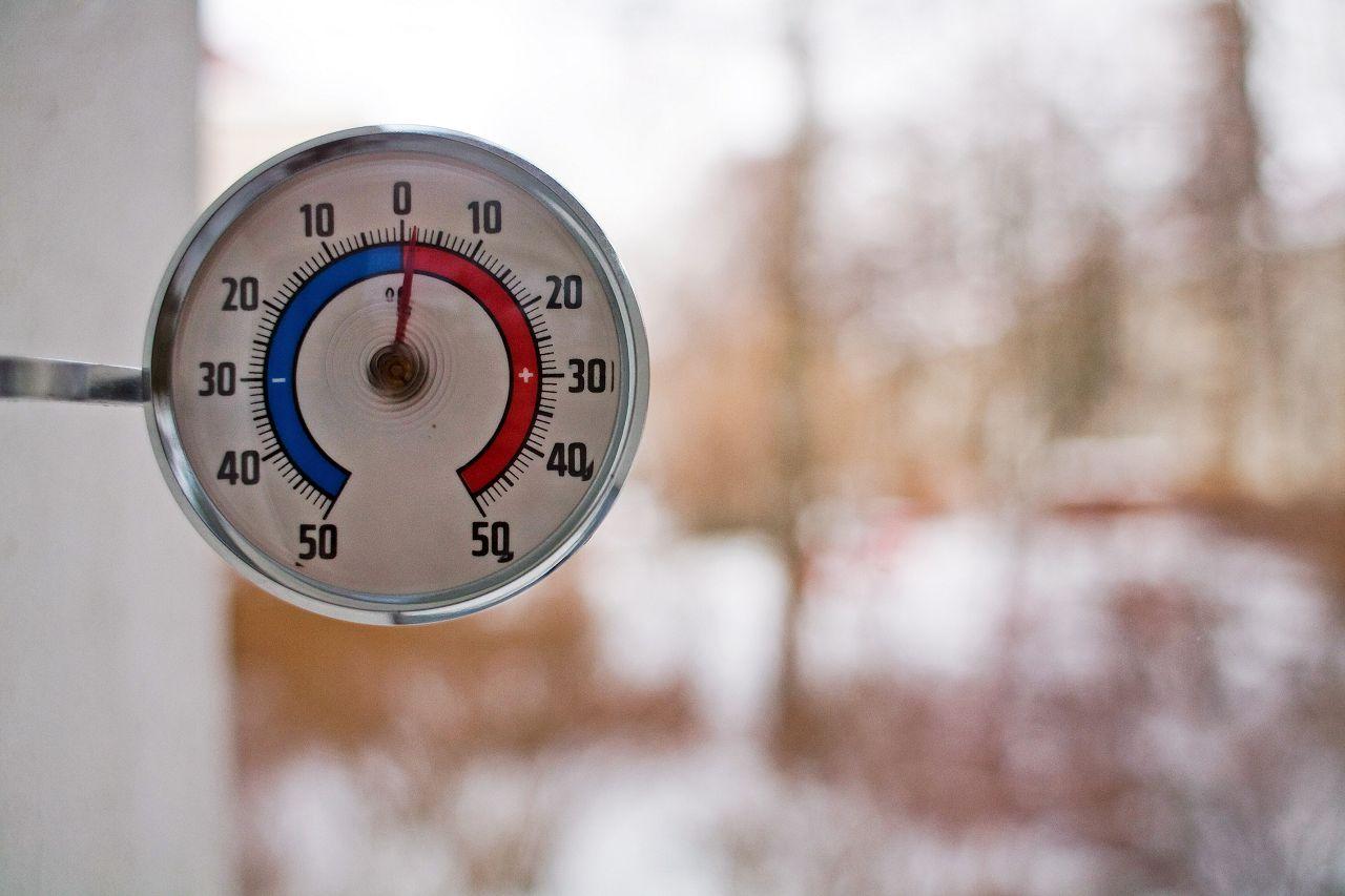 Постоянная температура в конюшне 5-10 °C