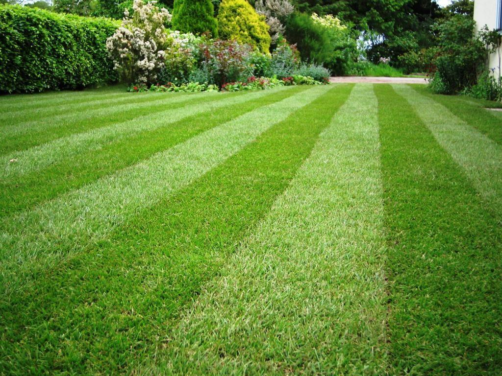 поливная система для газона