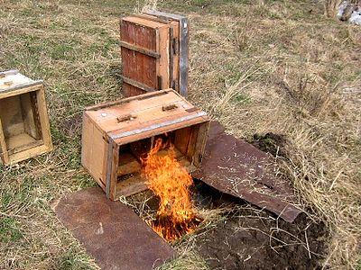 Можно дезинфицировать ульи пламенем