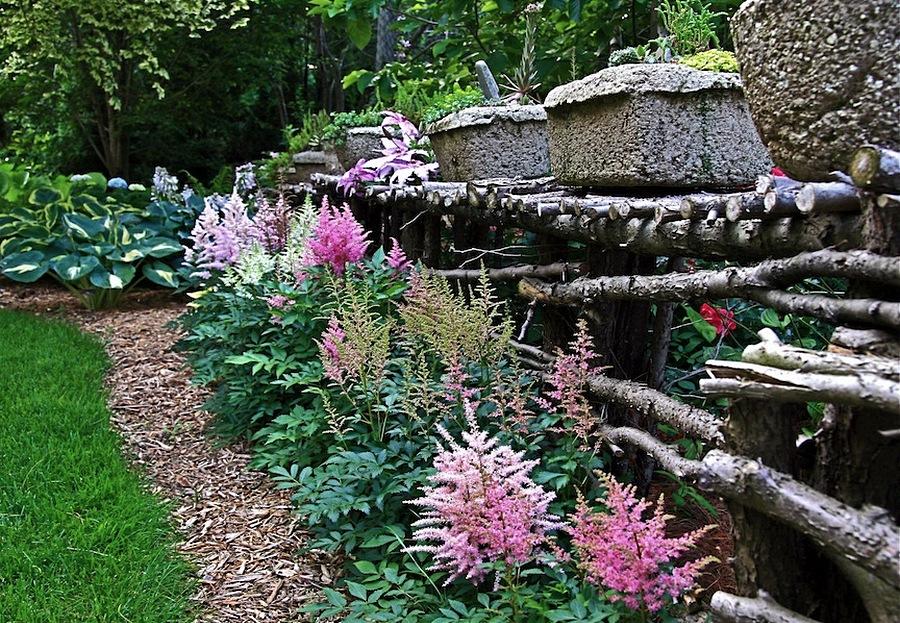 Астильба в парках и садах