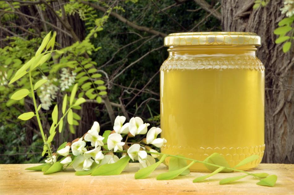 Равномерно светлый акациевый мед