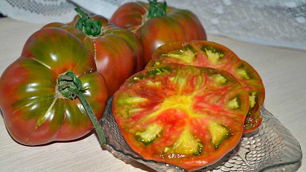 Сорт томатов Черный ананас