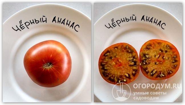 Фотографии помидора сорта «Черный ананас»