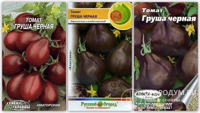 Упаковки семян сорта «Груша черная» разных производителей