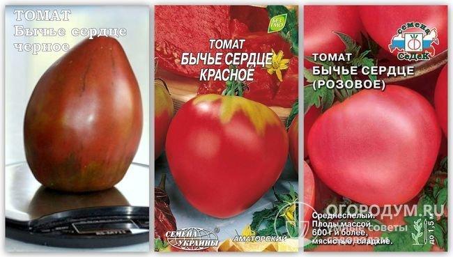 Фотография помидора сорта «Бычье сердце черное» и упаковки семян «Бычье сердце красное» и «Бычье сердце розовое» разных производителей