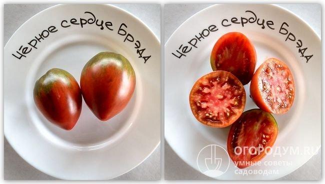 Фотографии помидоров сорта «Черное сердце Бреда»